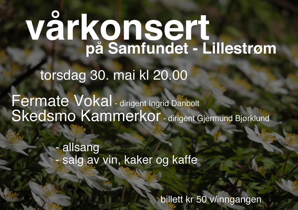 plakat vårkonsert 300513-web